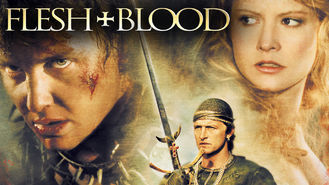 Netflix box art for Flesh   Blood
