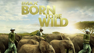 Is Born to Be Wild: IMAX on Netflix?