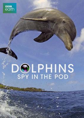Dolphins: Spy in the Pod - Season 1